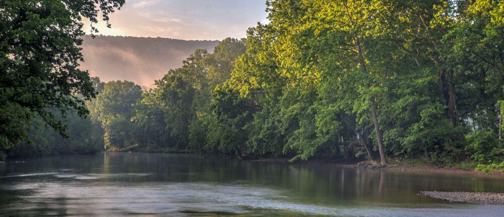 Shenandoah River Fork at Muse VIneyards