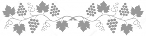 Grape Vine - Wineries Near DC