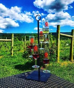 Wine Flights - Muse Vineyards
