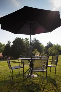Lawn Seating at Muse Vineyards