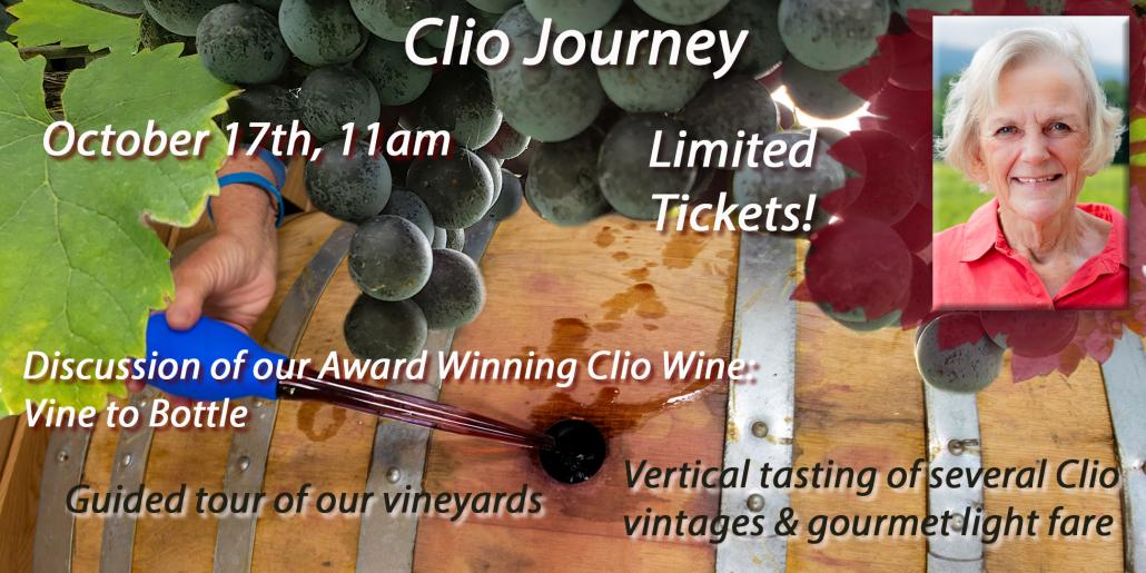 Clio Journey